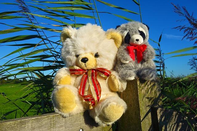 L'importance d'offrir une peluche panda comme cadeau